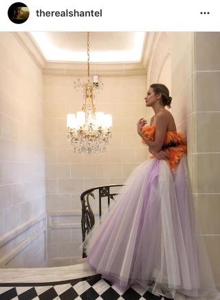 shantel vansanten- celebrity- the flash- instagram- couture gown